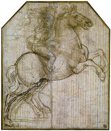 Rearing+horse+drawing