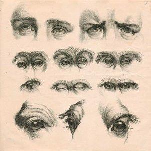 Le Brun. comparison of eyes. Dissertation sur un Traité de Charles Lebrun concernant le Rapport de la Physionomie Humaine avec Celle des Animaux Paris, Chalcographie du Musée Napoléon, 1806