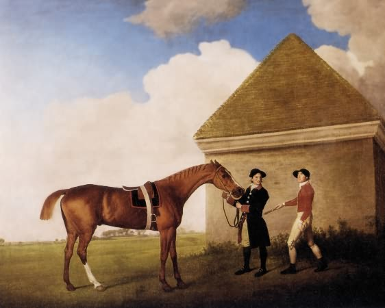 """Stubbs. Eclipse. 1770. '' It was at this race on May 3, 1769 that the flamboyant Captain Denis O'Kelly made his bet in the form of the quip, """"Eclipse first, the rest nowhere."""" In 1769, a horse that was more than 240 yards behind the winner was said to be """"distanced"""", or nowhere. O'Kelley won his bet and became a part owner of Eclipse. Eclipse won 18 races in his career without ever being whipped or spurred. Eclipse retired to stud and sired three of the first five Derby winners including the noted Pot-8-O's. Eclipse's many distinguished descendants are the reason for the predominance of his great-great-grandfather the Darley Arabian's line over the lines of the other two Foundation stallions. 80 percent of all Thoroughbreds today can trace their ancestry back to Eclipse.  ''"""